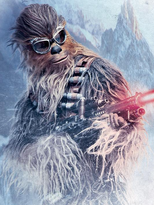 STAR WARS - Canvas 60X80 '38mm' - Chewie Blaster