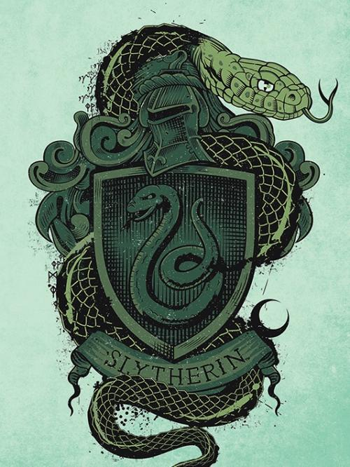 HARRY POTTER - Canvas 60X80 '38mm' - Slytherin