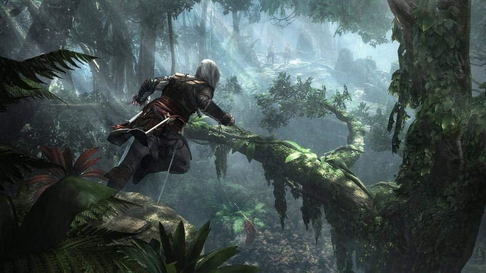 Assassin's Creed 4 Black Flag HITS_4